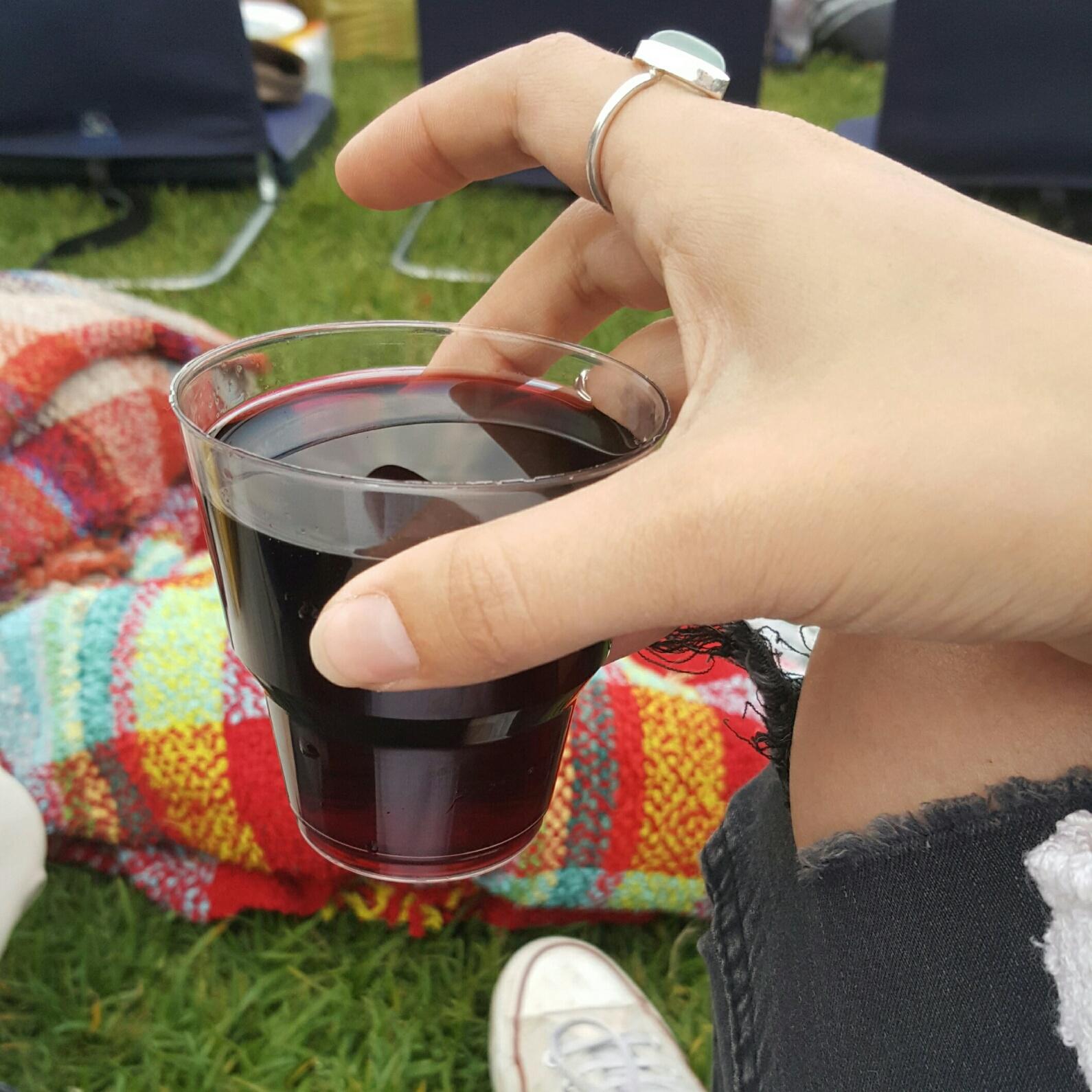 wine pinic, the galileo theatre kirstenbosch gardens