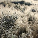 Our Frosty Matroosberg Adventure
