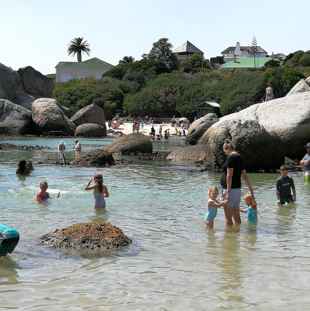Boulder's Beach, Simon's Town, Cape Town